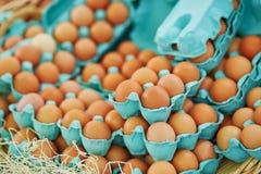 Nya ägg på bondemarknad Arkivfoton