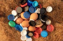 Nya ägg som översvämmas av plast- royaltyfri fotografi