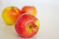 nya äpplen Royaltyfri Foto