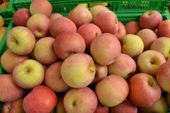 nya äpplen Arkivbild