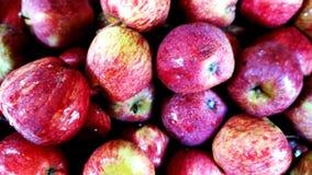 Nya äpplen i en fruktaffär royaltyfri bild
