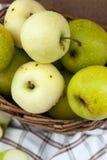 Nya äpplen i en korg Royaltyfri Fotografi