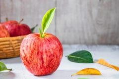 Nya äpplen i korg arkivbilder
