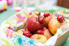 Nya äpplen i korg med chokladnyckelpigor fotografering för bildbyråer