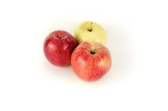 Nya äpplen på vit bakgrund Fotografering för Bildbyråer
