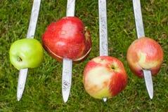 Nya äpplen som spetsas på gafflarna arkivbild