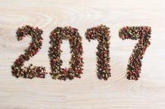 2017 nya år Royaltyfri Bild
