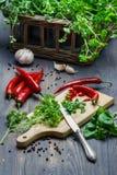 Nya örtar och kryddor som skördas nytt Arkivbilder