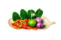 Nya örter och kryddor (chili, citron, schalottenlök, Kaffirlimefruktbladet) Arkivfoton