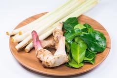 Nya örter och kryddor eller asiatisk mat för ingredienser, thailändsk mat som är sund för att laga mat Royaltyfri Foto