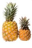 nya ananas Arkivfoto