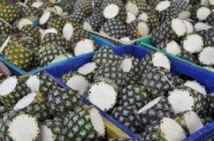 nya ananas för lantgård Arkivfoton