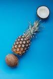 Nya ananas och kokosnötter på blå bakgrund Royaltyfria Foton