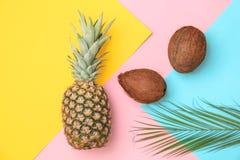 Nya ananas och kokosnötter på färgbakgrund Arkivfoto