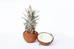 Nya ananas och kokosnötter på vit bakgrund Royaltyfri Bild