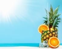 nya apelsinananastubules Royaltyfri Bild