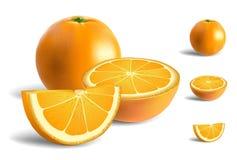 nya apelsiner vektor illustrationer