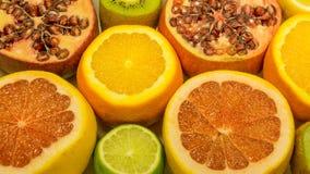 Nya apelsiner, citroner, grapefrukt royaltyfri fotografi