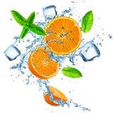 Nya apelsiner i vattenfärgstänk över vit Royaltyfri Foto