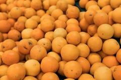 Nya apelsiner på en lokal organisk lantgård marknadsför på en tropisk Bali ö, Indonesien Det sunda livet Royaltyfria Bilder