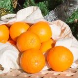 Nya apelsiner som rullar ut ur shoppingpåsen Royaltyfri Fotografi
