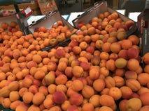 Nya aprikors marknaden royaltyfri fotografi