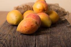 Nya aprikors med bladet Arkivbild