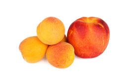 Nya aprikors och nektarin som isoleras på en vit Arkivfoto