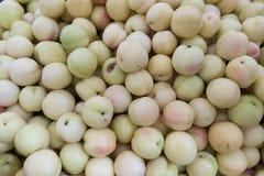 Nya aprikors på till salu stånd Royaltyfri Bild