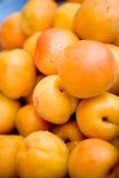 nya aprikosar arkivbilder