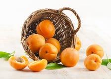 Nya aprikosar i korgen Royaltyfri Fotografi