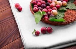 Nya artistiska olika skuggor av ljusa krusbär för röd färg i en träkorg En korg på vitt tyg på en trätabell Fotografering för Bildbyråer