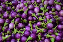 Nya aubergine på marknaden arkivbild
