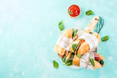 Nya bagettsmörgåsar arkivbild