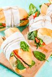Nya bagettsmörgåsar royaltyfria bilder