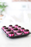 Nya bakade chokladmuffin i rosa omslag Royaltyfria Bilder