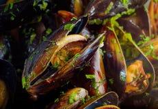 Nya bakade musslor Arkivfoton