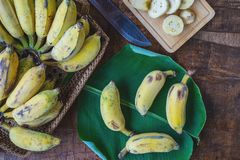 Nya bananer i en korg p? en tr?tabell arkivfoto