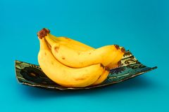 Nya bananer på en blå maträtt arkivfoto