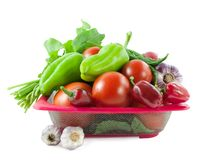 Nya bio grönsaker Royaltyfri Fotografi