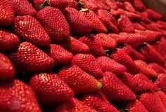 Nya bio jordgubbar Fotografering för Bildbyråer