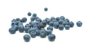 nya blåbär Royaltyfri Bild