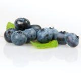 nya blåbär Arkivfoton