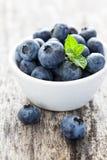 Nya blåbär Royaltyfria Bilder