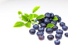 Nya blåbär på en vit bakgrund Sund sommarfrukt Smak av sommaren Växa av blåbär Annonsering på blåbär Arkivfoton