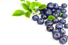 Nya blåbär på en vit bakgrund Sund sommarfrukt Smak av sommaren Växa av blåbär Annonsering på blåbär Royaltyfri Foto