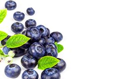 Nya blåbär på en vit bakgrund Sund sommarfrukt Smak av sommaren Växa av blåbär Annonsering på blåbär Arkivfoto