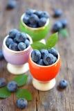 Nya blåbär på trätabellen Arkivbild