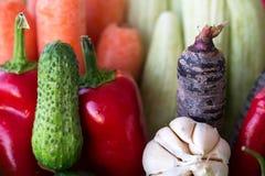 Nya blandade grönsaker för knipa royaltyfria bilder