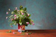 Nya blommor från trädgården i en vas royaltyfri fotografi